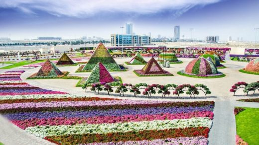 Dubai Miracle Garden Aerial At Winter
