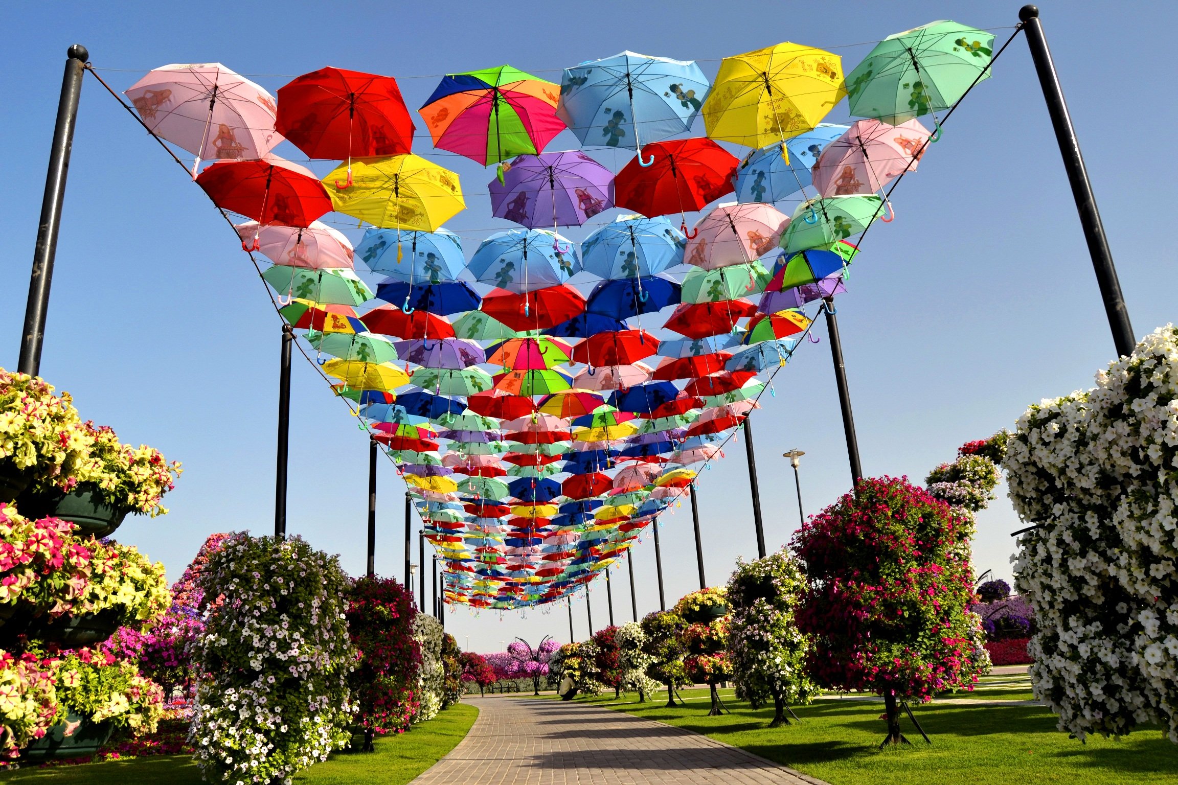 Dubai Miracle Garden Umbrella