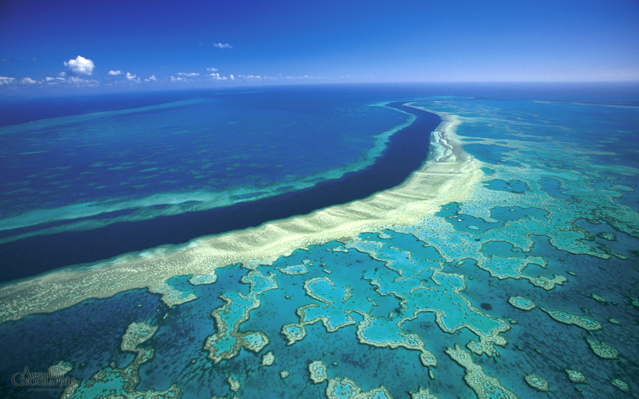 Great Barrier Reef Aerial View From Top