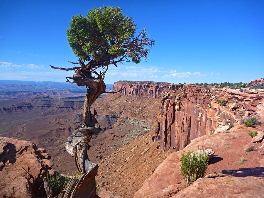Canyonlands National Park Image