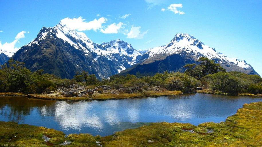 Fiordland National Park New Zealand Photo