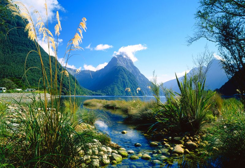 Fiordland National Park Panorama