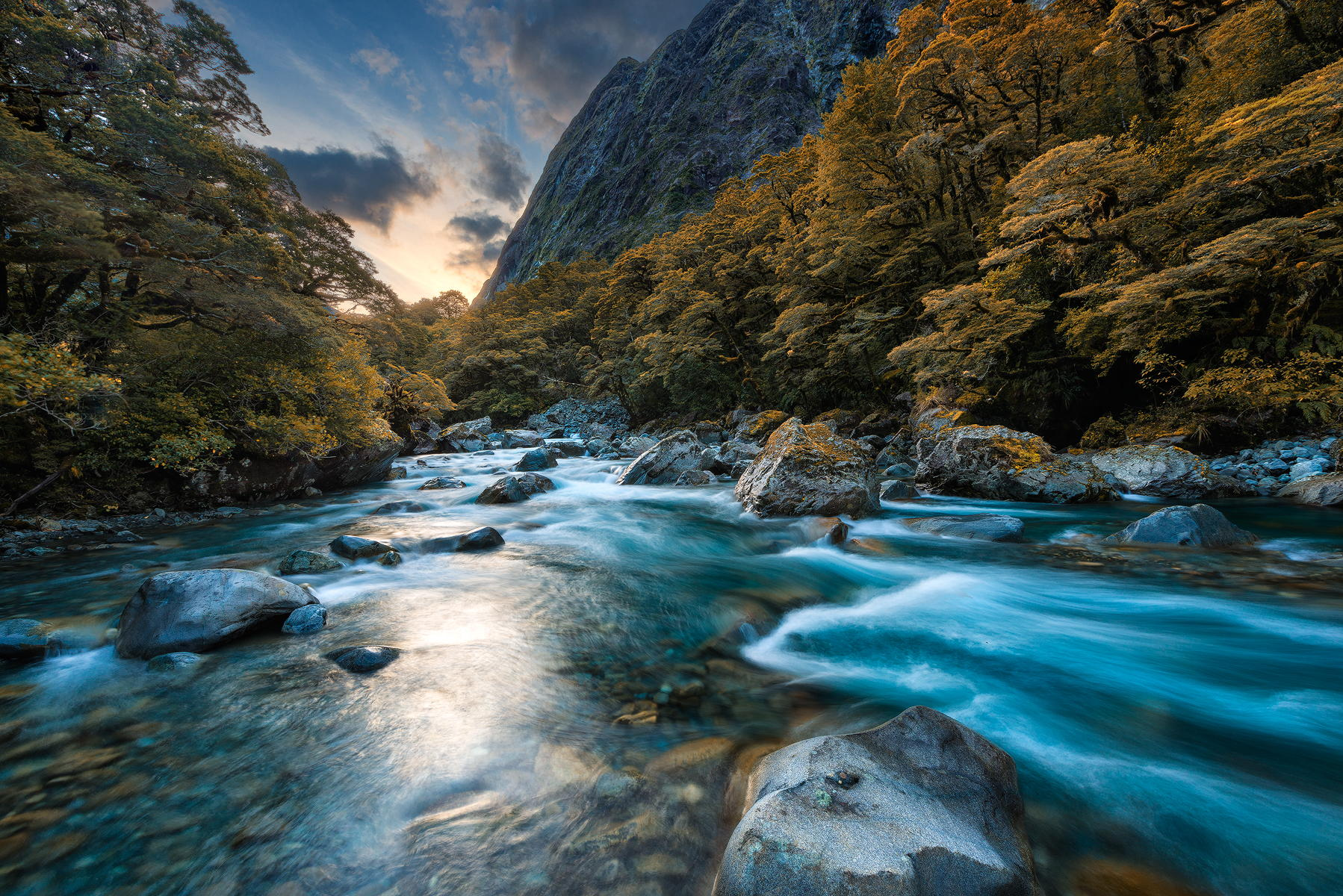 Fiordland National Park River New Zealand