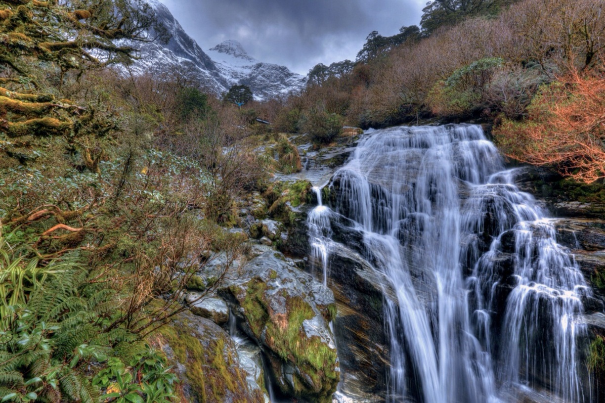 Fiordland National Park Waterfalls