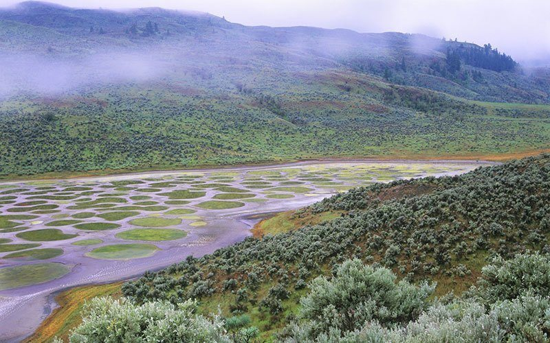 Spotted Lake Photo